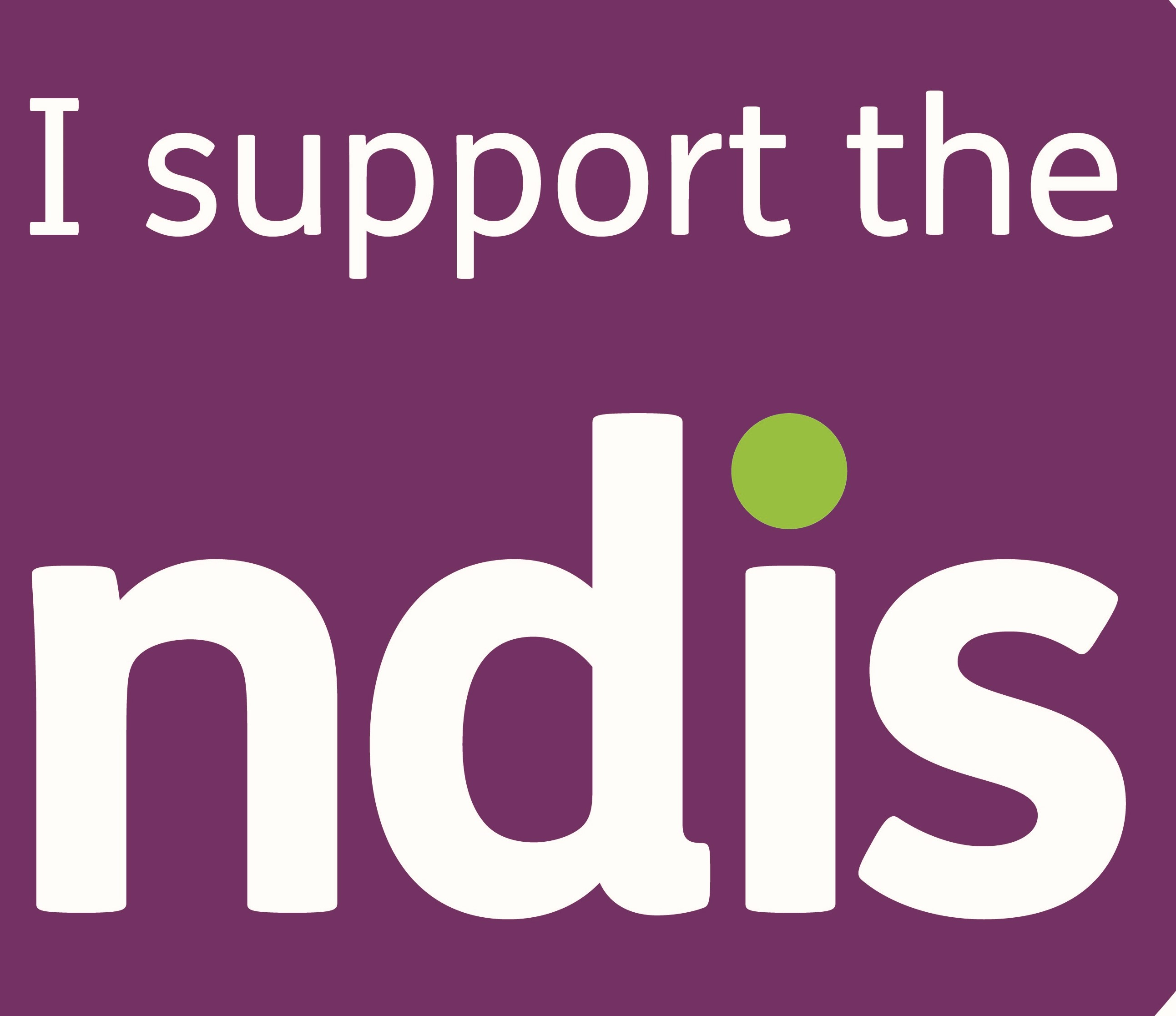 I support the NDIS v0.3 01 3